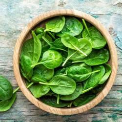 الحميات الغذائية iron-rich-diet-min-250x250