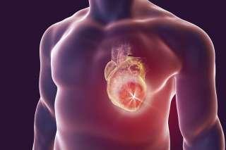 عالم القلب shutterstock_649471195