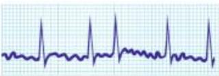 عالم القلب Screen-Shot-2021-07-15-at-12.12.35-PM