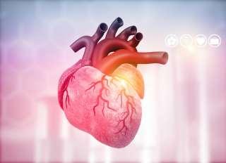 عالم القلب shutterstock_1412860979